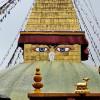 Instant Nepal